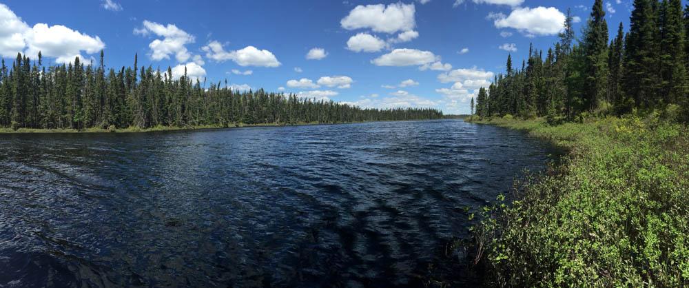Mark Morris gr.Quebec wilderness