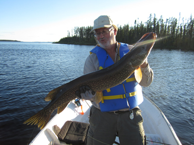 Gary Peterson's group Northern pike's fish cacth at Gouin Bay