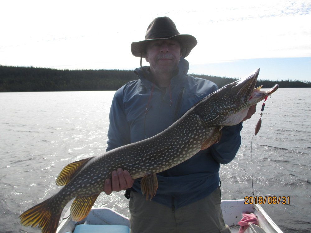 Huge pike caught on caesar's lure by Gary Wunderlich